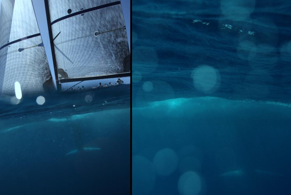 sailing_001